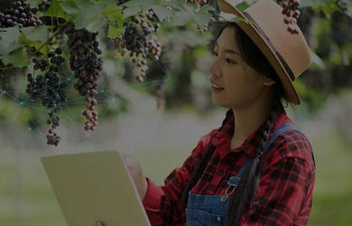 Making Fresh Fruit & Vegetable Supply Chains Resilient with Technology | FarmERP