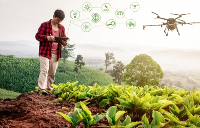 IoT-driven Digital Agriculture – Changing the Face of Smart Farming | FarmERP