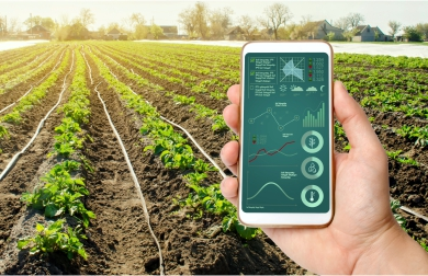 Digitalisation of FPCs – Techpowering Agriculture to Strengthen Farmer Potential | FarmERP
